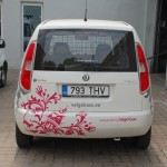 Valge Kassi auto